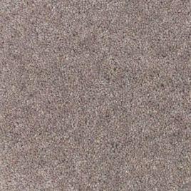 Excellent tapijt